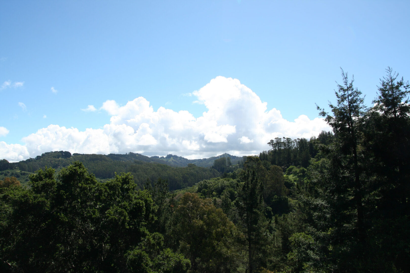 Clouds over Tilden